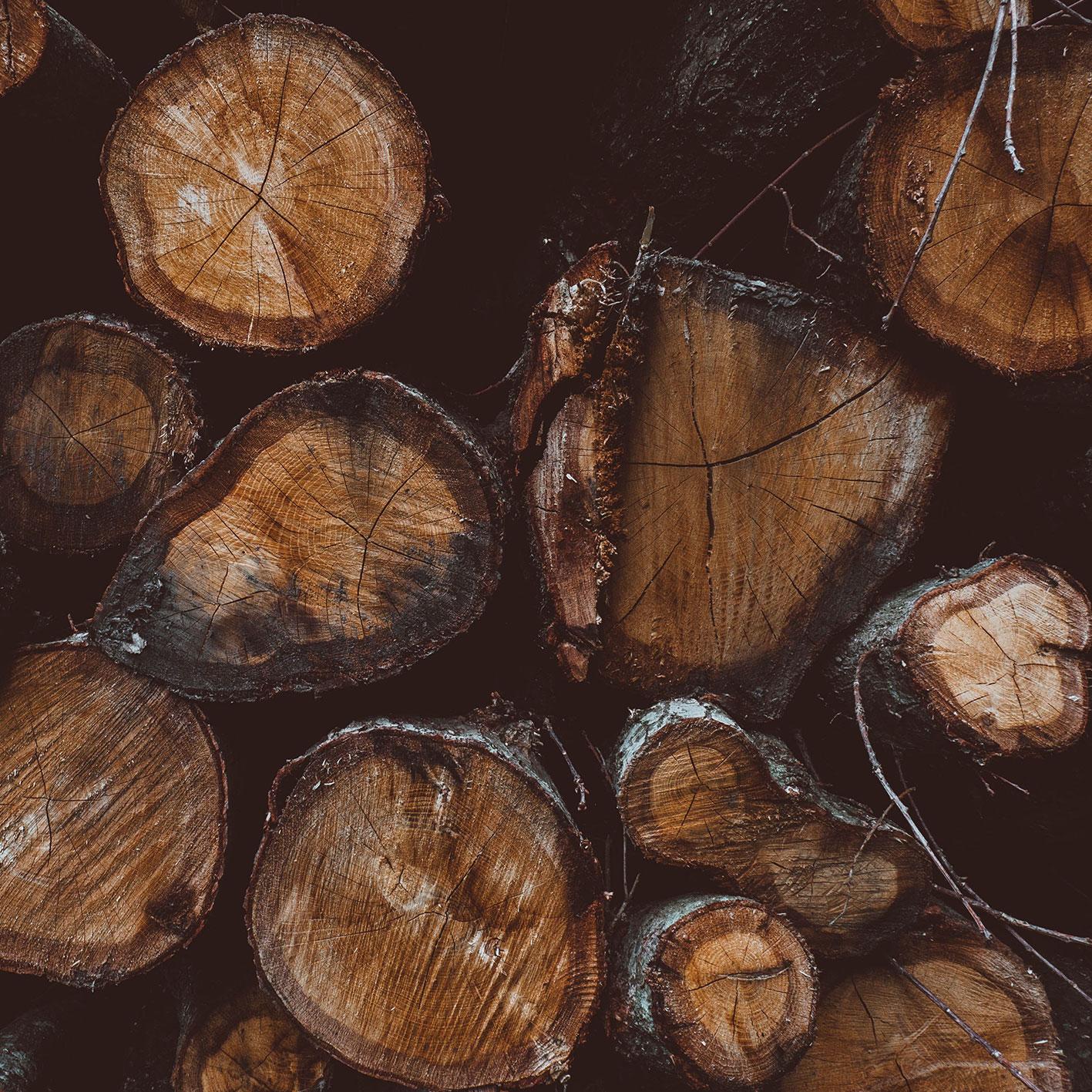 Motten Vorsorge Holz Natur